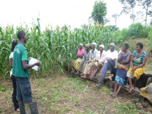 ASHC- Africare in Ghana -testing messages with women farmers