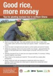 Good rice more money - lowland rice poster