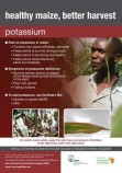 Potassium for maize