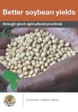 soybean leaflet