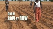 grow row by row