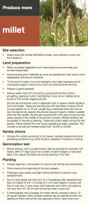 Millet factsheet
