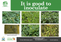 It is good to inoculate poster