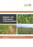 Sorghum millet legume cropping guide