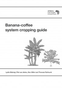 390 Banana coffee guide