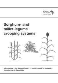 Sorghum and millet legume cropping system