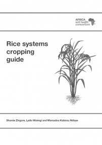 Rice cropping guide B n W