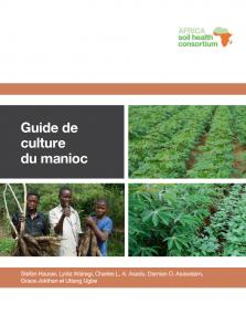 French cassava