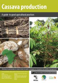 126 cassava production
