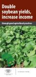 157 soybean leaflet