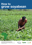183 How to grow soybean flipchart