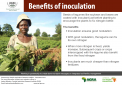 Benefits of inoculation