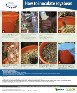 How to inoculate soyabean posterposter