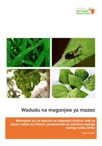 532 wadudu na magonjwa ya mazao