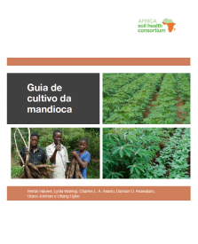 Cassava cropping guide colour Portuguese