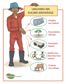 542 HOUSEHOLD KISWAHILI CUTS