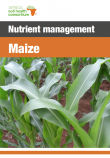 554 maize nutrient management guide