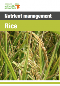 556 rice nutrient management guide