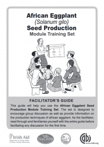 African Eggplant Seed Trainer's Notes