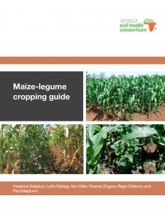 maize-legume guide
