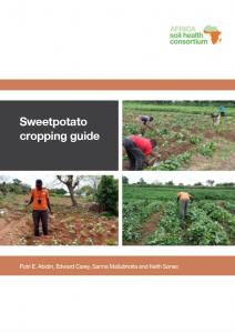sweetpotato guide