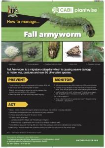 Fall armyworm poster Uganda