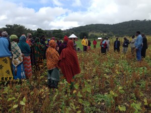 AFPA soybean demo training Sangara-3 May 2017