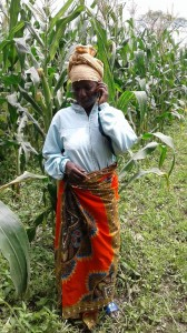 UPTAKE woman maize faremr with phone