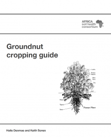 562 groundnut cropping guide