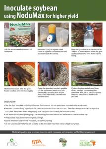 564 Nodumax inoculation poster