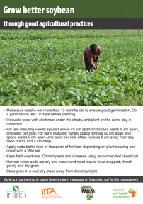 Soybean poster