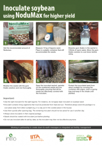 Inoculate with nodumax