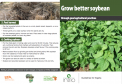 Grow better soybean leaflet