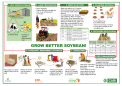 English illustrated soybean poster