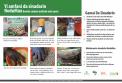 Inoculation poster Hausa