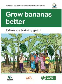 Bananas better