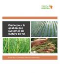 French rice thumbnail