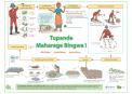 523 Maharage bingwa FIPS poster